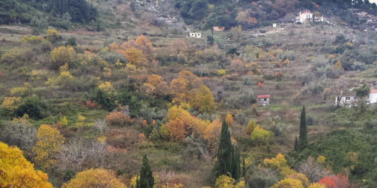 Autumn Blues in Skopelos Country Villas
