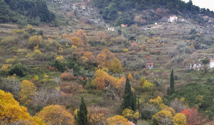 Autumn Blues in Skopelos Country Villas