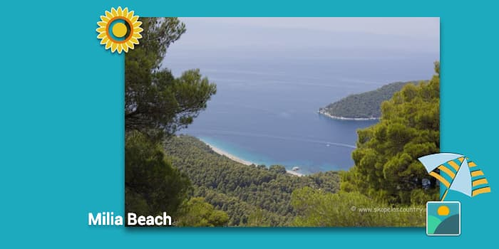 Skopelos Beaches - Milia Beach