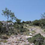 Skopelos Country Villas - Sendoukia visit - trail